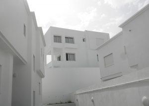 panorama-12
